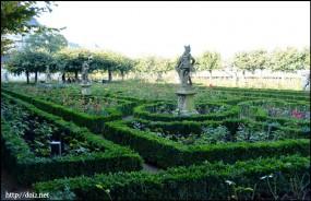 Neue Residenzのバラ園