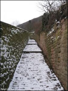 Schlangenweg(蛇の道)
