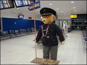 空港のクマ