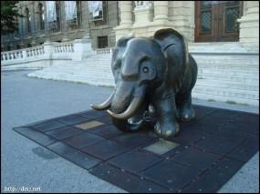 自然史博物館の象の像