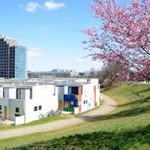 【ミュンヘン】Olympisches Dorf 旧オリンピック選手村と桜