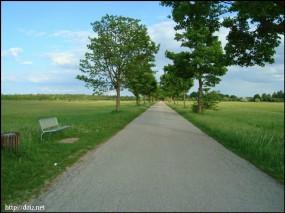 Schleißheimへの道