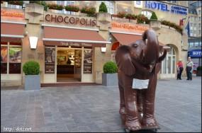 チョコの象?
