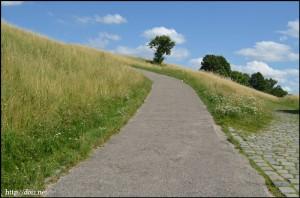 Tollwood横の丘