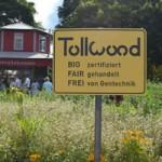 【ミュンヘン】Tollwood(オリンピアパークのイベント)