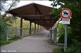 【Englischer Garten 】エングリッシャーガルテン(英国庭園)の橋