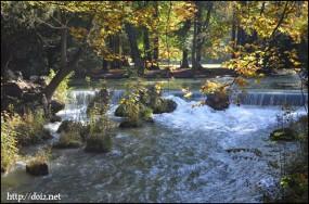 英国庭園を流れる川