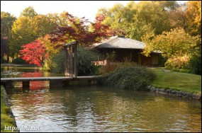 Japanisches Teehaus(日本茶室)