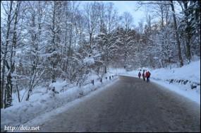 ノイシュバンシュタイン城への道