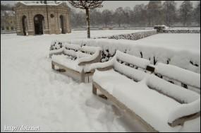12月中旬、Hofgarten