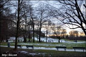 12月中旬、英国庭園