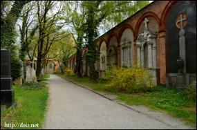 Südlicher Friedhof
